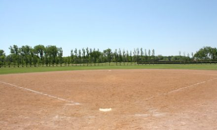 Baseball Field Maintenance Tips For Coaches And Volunteers